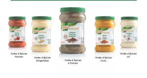 Purées d'épices Knorr Professionnal