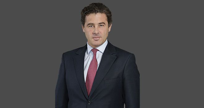 Grégoire Guillemin, Groupe Pomona