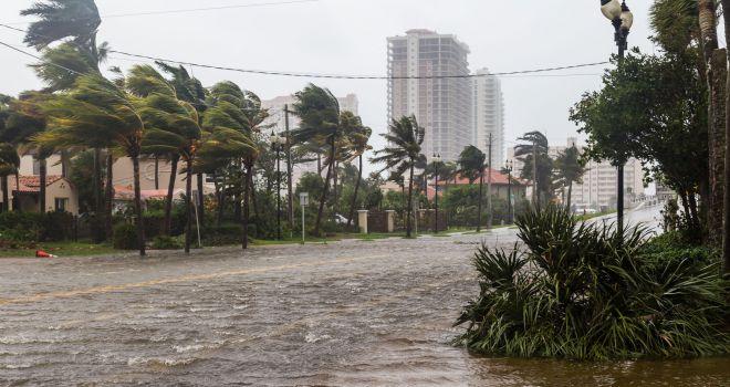 Ouragan Irma - Satoshi Kina